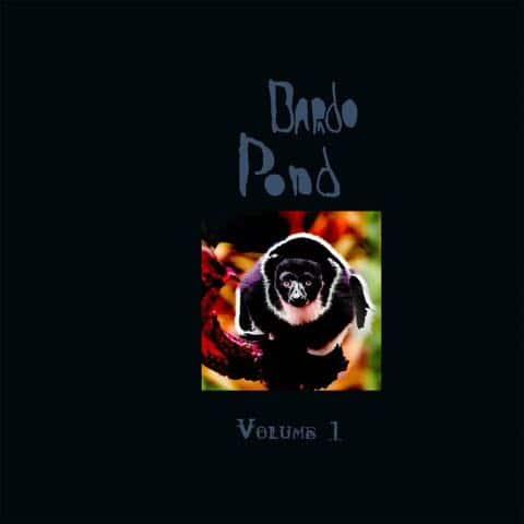 Bardo Pond - Volume 1