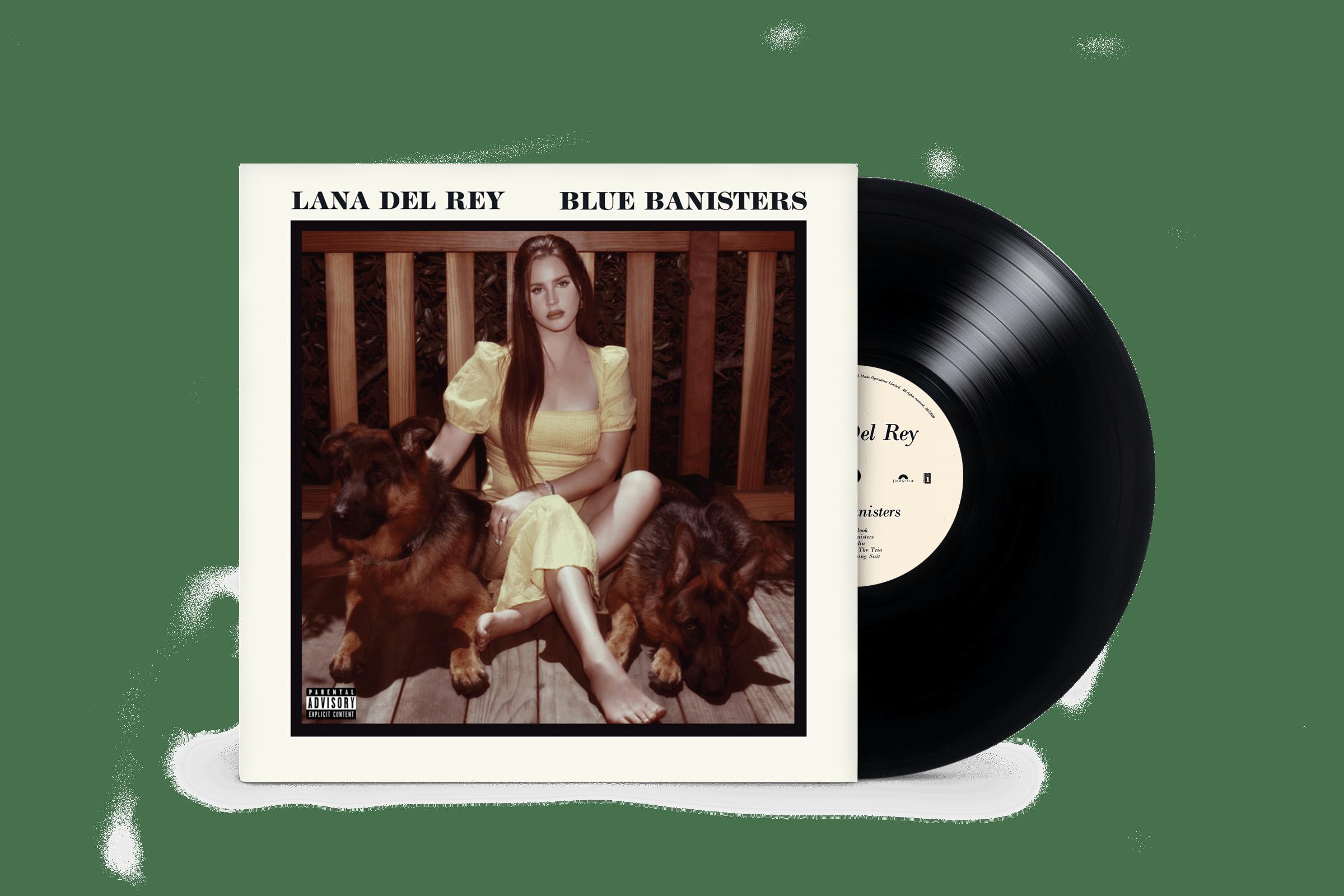 LDR-BB-Vinyl-Standard-Product-Shot-4.png